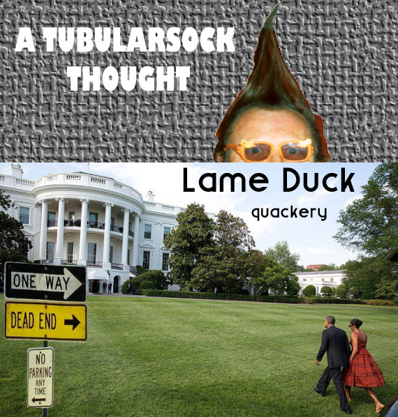 TUBE THOUGHT LAME DUCK