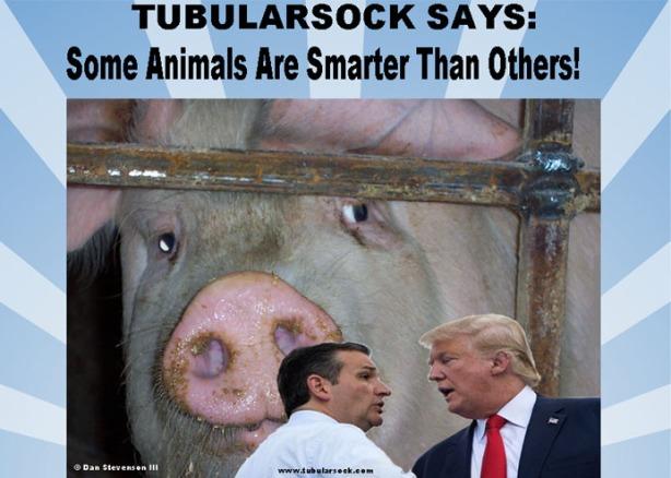 Tube says-smarter